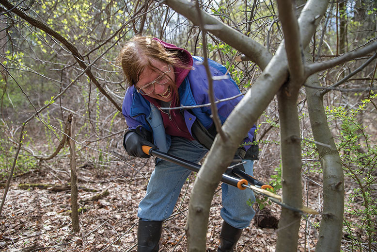 Great Swamp Invasives Strike Team volunteer Linda Jerdach goes after a young Callery pear tree with a large lopping tool.