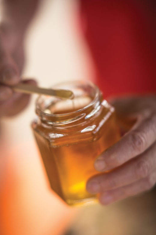 Local honey is abundant at the harvest fest in Sussex County.