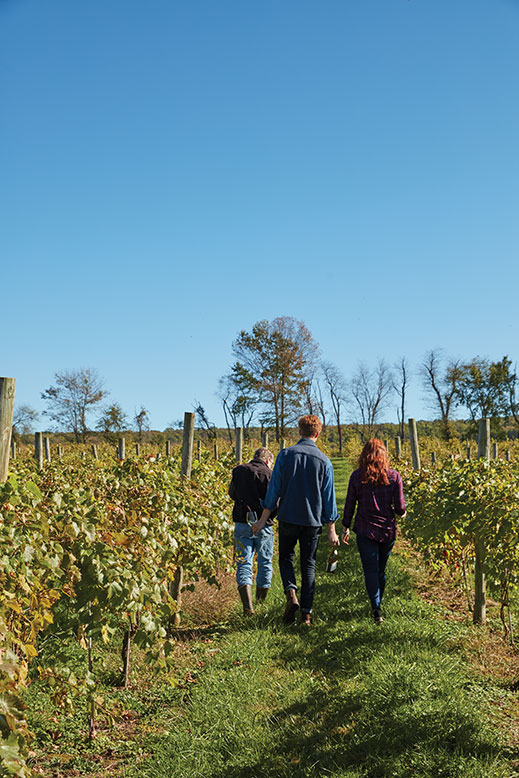 "Associate winemakers Stephen ""Zeke"" Johnsen and Conor Quilty and NJM associate editor Shelby Vittek stroll through Unionville Vineyards in Ringoes."