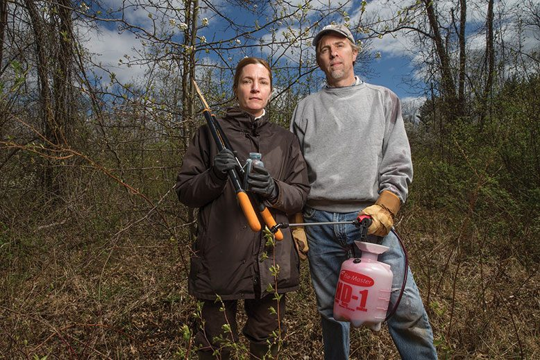 The Great Swamp in Morris County has its own strike team to battle invasives.