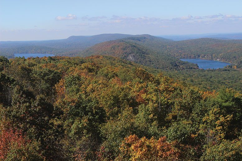 The panorama from Catfish Fire Tower, looking east toward Fairview Lake and Long Pine Pond.