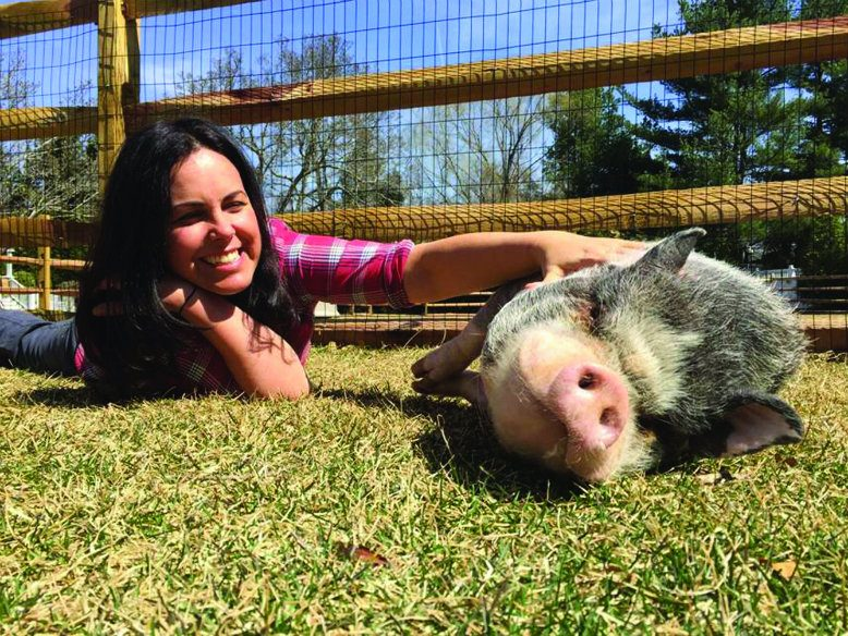 Pugsley, a pot-bellied pig, enjoys a little attention from Tracey Stewart at Bufflehead Farm in Middletown.